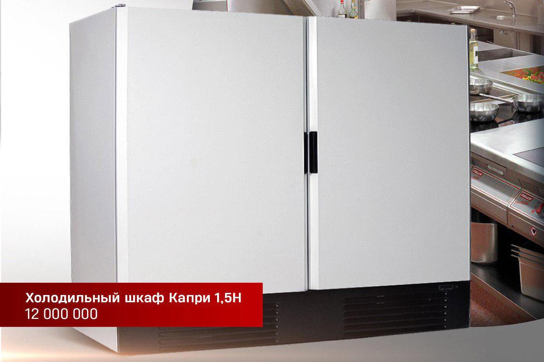 Морозильный шкаф с двумя распашными дверями Капри 1,5Н
